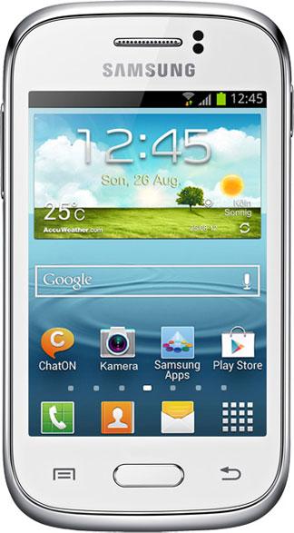 Samsung Galaxy Young Bild 2